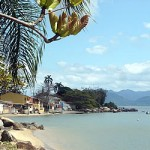 Ribeirao_da_Ilha